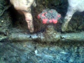 Broekn pipes found by ANS Plumbing